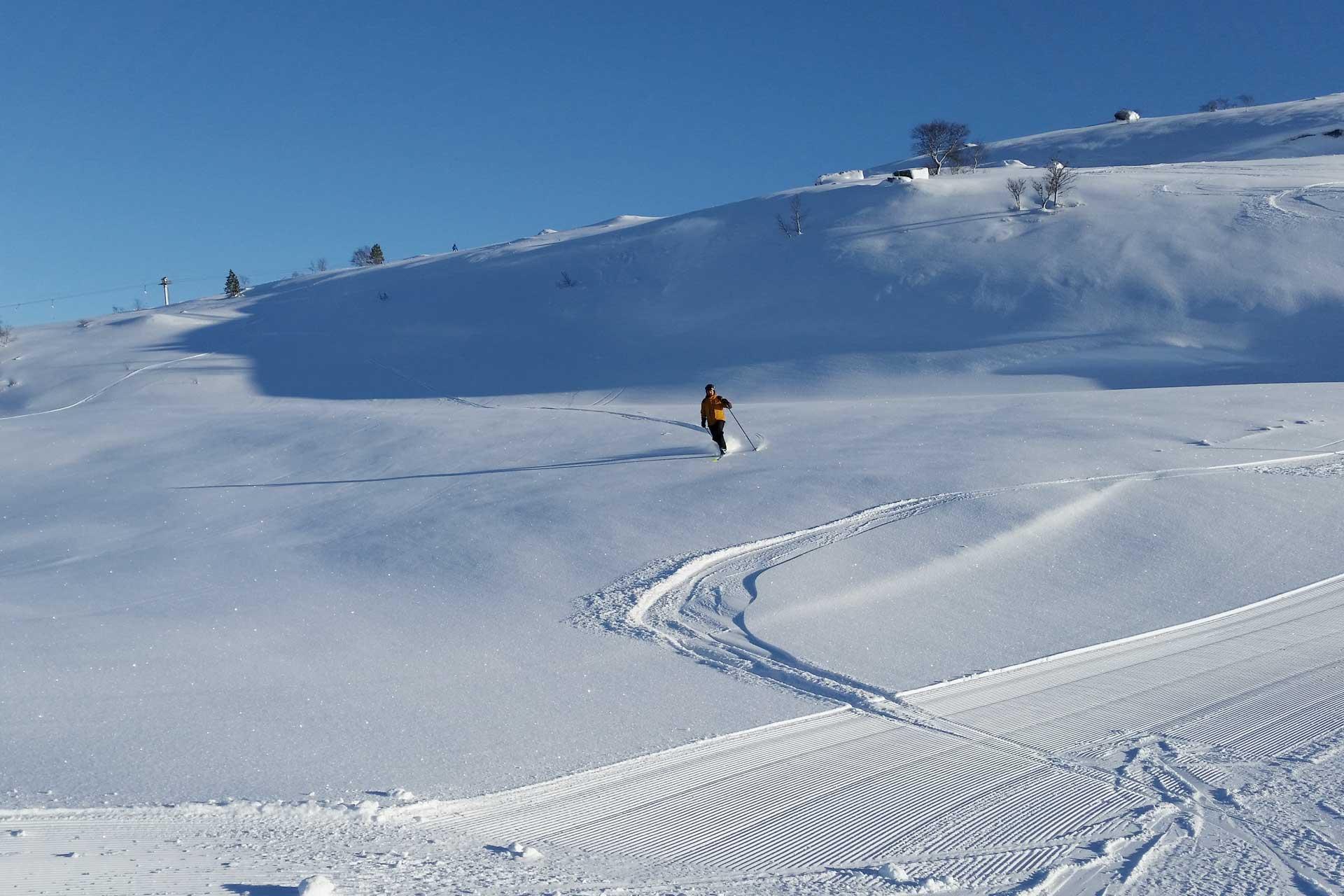 Alpinsenter